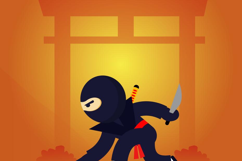 Ninjalinking seo